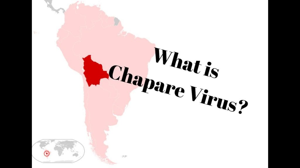 The recently-discovered Chapare virus causes a fever, vomiting and internal bleeding have found that it can be spread from person to person.
