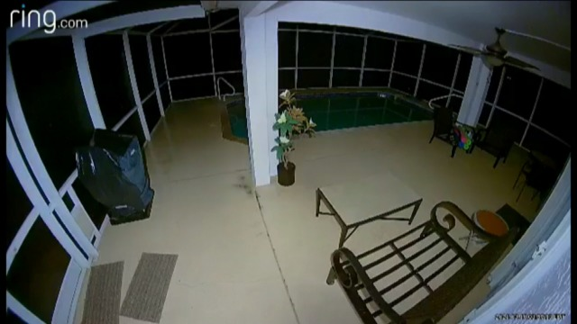 Mysterious home surveillance video puzzles Cape Coral residents