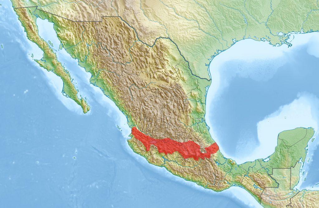 Map of the widespread Michoacán-Guanajuato volcanic field