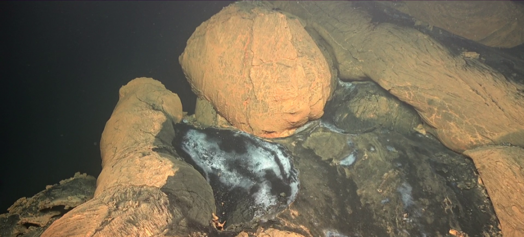 first images mayotte underwater volcano, first images mayotte underwater volcano video, first images mayotte underwater volcano photo