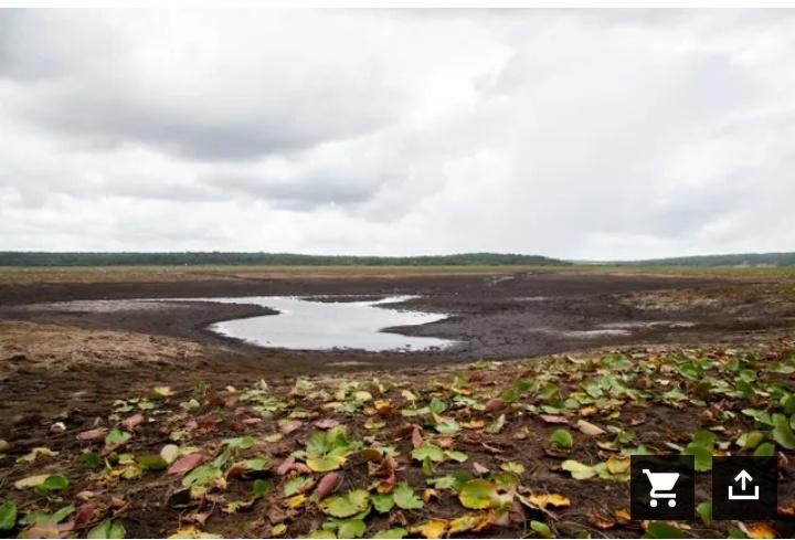 giant sinkhole drains Jackson Lake near Thalahassee Florida, giant sinkhole drains Jackson Lake near Thalahassee Florida video, giant sinkhole drains Jackson Lake near Thalahassee Florida photo, giant sinkhole drains Jackson Lake near Thalahassee Florida june 2021