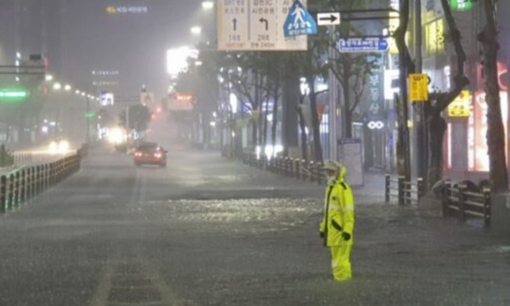 South Korea, Typhoon Omais, South Korea - Typhoon Omais video, South Korea - Typhoon Omais pictures