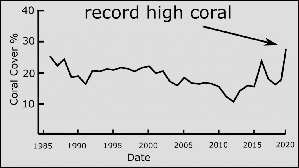 Record high coral cover of Great Barrier Reef in 2021