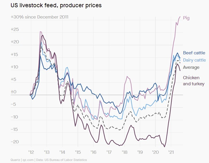 US livestock feed and production prices, US livestock feed and production prices increase, US livestock feed and production prices 2021