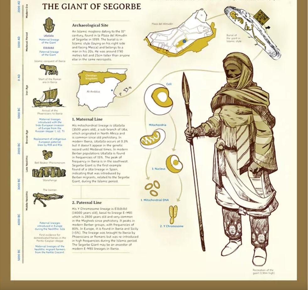 the Giant of Segorbe DNA analysis, Giant of Segorbe, segorbe giant